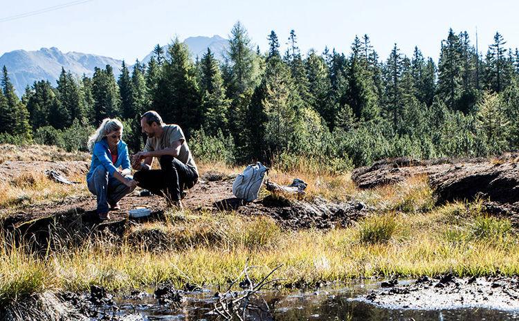 Naturpark Kaunergrat und Piller Moor